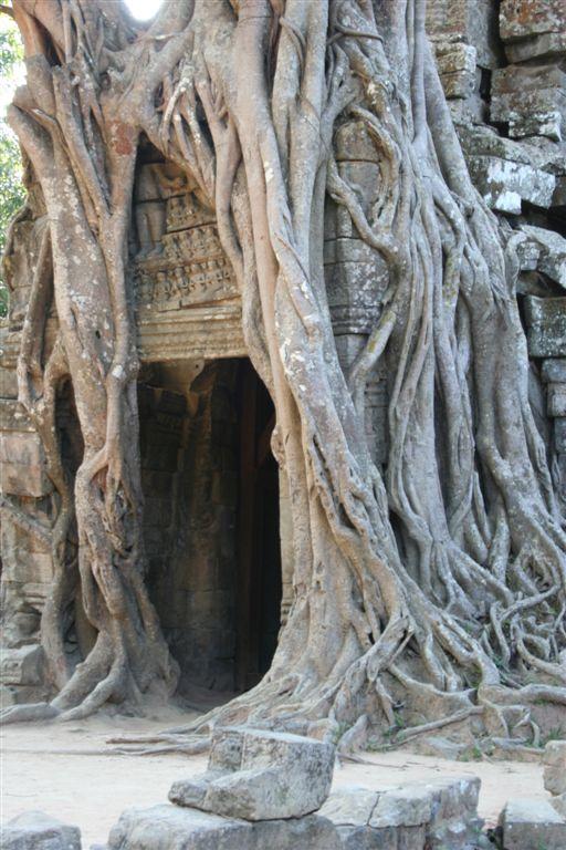 Chrámy v džungli- Kambodža