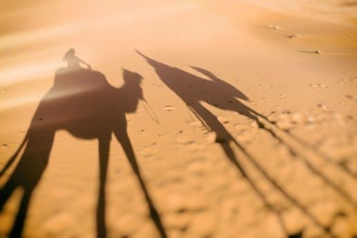 Morocco Photography Tours