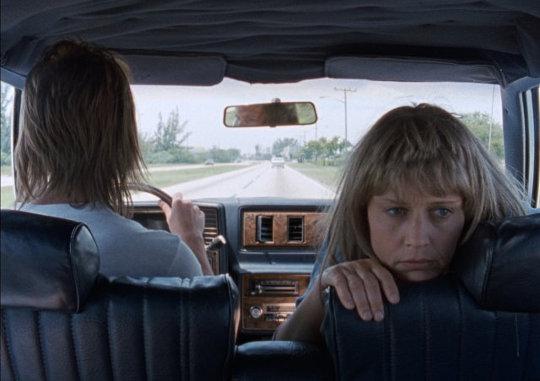 Lisa Bowman et Larry Fessenden on the road dans River of Grass