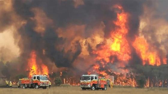 australia-fires-charity