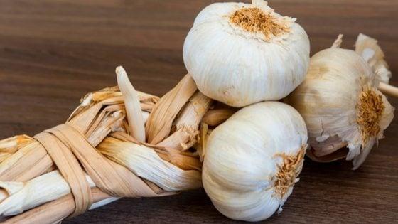 how to store garlic long term #garlic