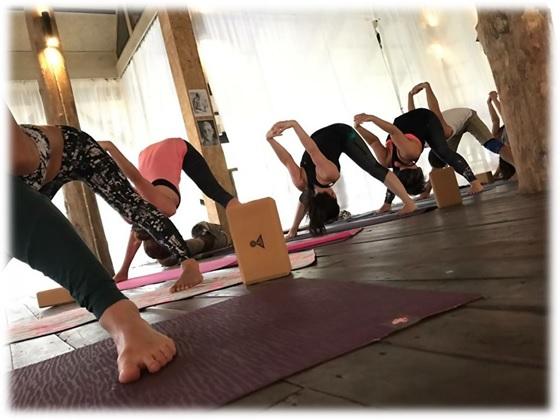 the best yoga teacher training in thailand