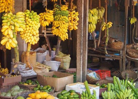 Sri Lankan fruits, the fruit market at Galle Sri Lanka