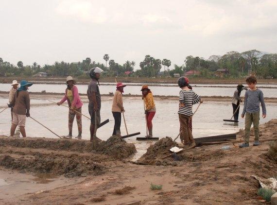 Making salt Kampot Cambodia