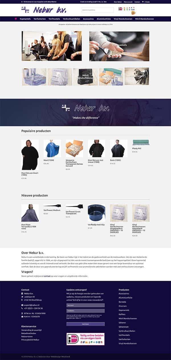 Webdesign bureau Westland maakt een professionele website voor Nebur