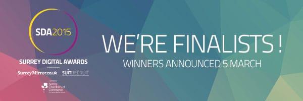 revise it finalists