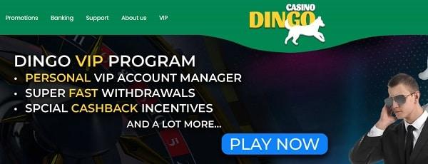 VIP Promo, Cashback, Rewards
