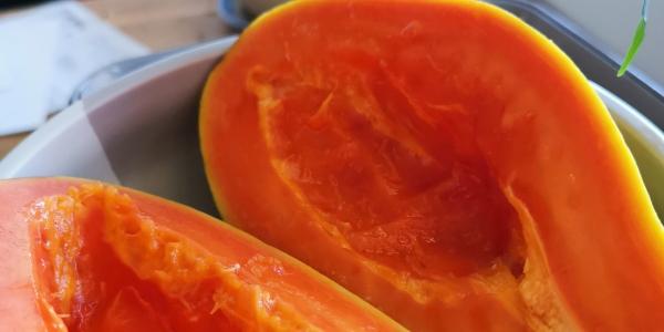 papaye orange