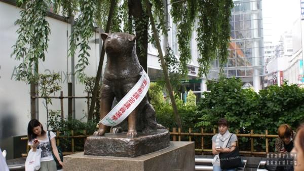 Japonia, Tokio - Shibuya pies Hachiko