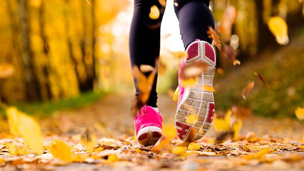 Тренировка осенью