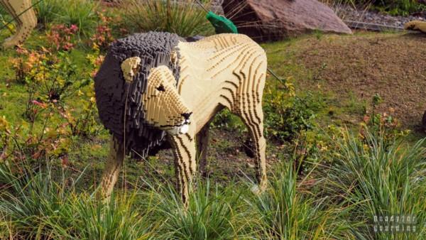 Lego Safari w Legolandzie, Billund - Dania