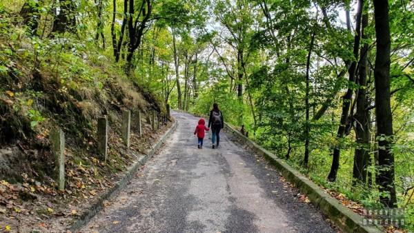 Wejście na wzgórze zamkowe, Lwów