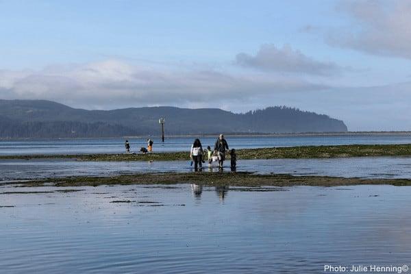 Clamming in girabaldi on the oregon coast