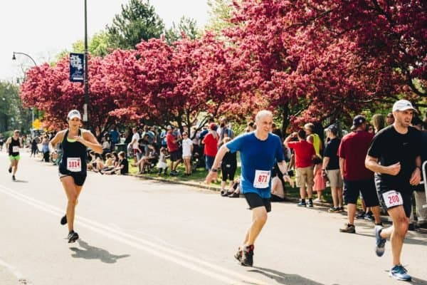 """A fun run and other activites make rochester's lilac festival one of the country's top """"flower shows. """""""