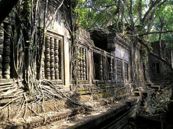 The beng mealea temple complex near angkor is an exotic and beautiful overgrown ruin.
