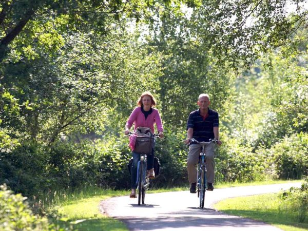 Fietsearrangement Bosmeer Drents Friese Wold