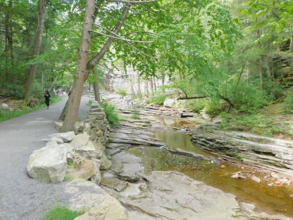 One of the many wide,trails for walking, biking and jogging at Minnewaska State Park. This one follows a creek.