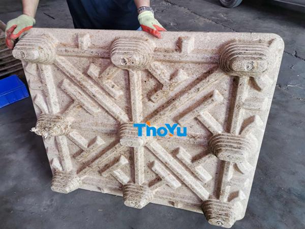 sugarcane bagasse pallet