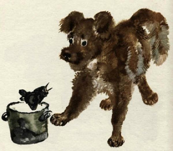 Скворец и пёс