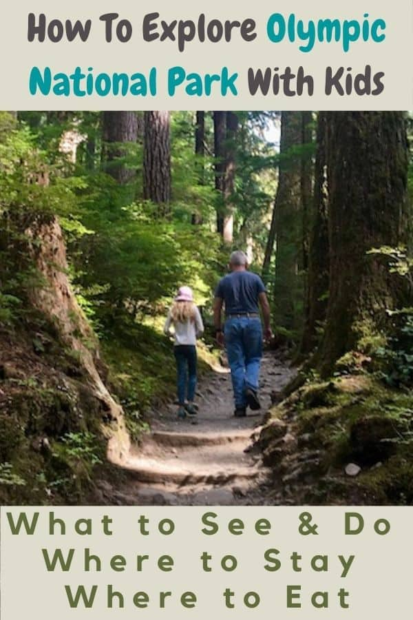 Our best planning tips and advice for visiting olympic national park with kids and tweens. Fun hikes, tide pools, hot springs & more. Plus lodging and restaurant ideas.