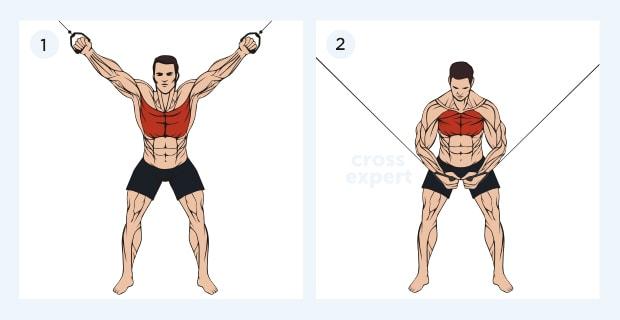 Сведение рук в кроссовере - какие мышцы работают