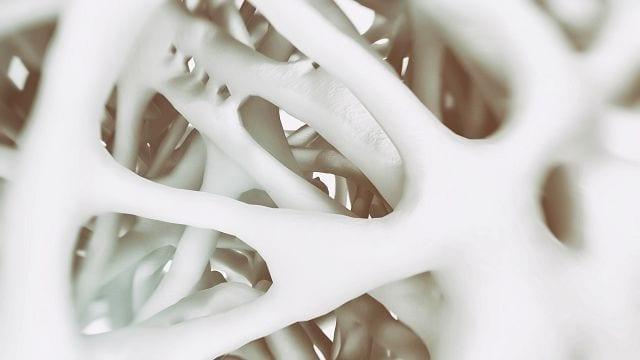 Proteoglykane sind Eiweißkörperchen, an die lange Ketten aus Kohlehydraten angelagert sind. Sie stabilisieren Gewebe und bilden Kontakte zwischen einzelnen Zellen aus.