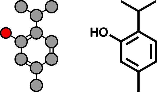 Grundbestandteil von Monoterpenen ist Isopren, es wird aus zwei Isoprenmolekülen gebildet.