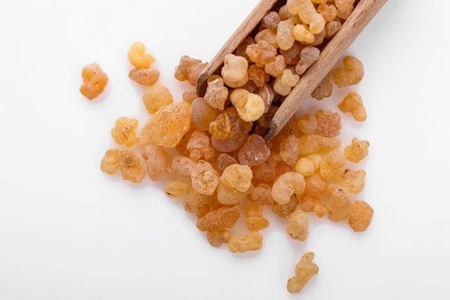 Benzoeöl wird aus dem geernteten Benzoeharz vom gleichnamigen Baum mittels Lösungsmittelextraktion gewonnen.