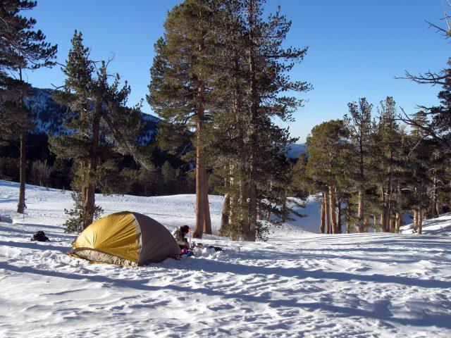 KLEINE CAMPINGS IN DE NATUUR KLEINE CAMPINGS NEDERLAND  Kamperen in de kerstvakantie, deze 5 campings hebben iets speciaals