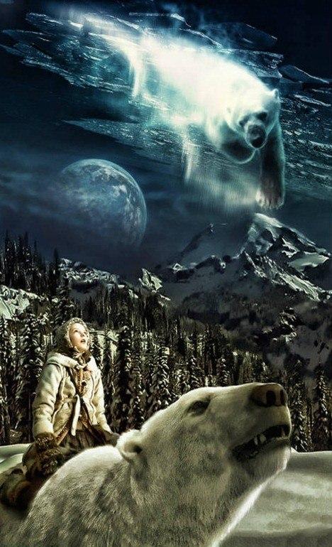 Polar-Bears-Dreaming--56264
