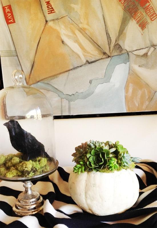 Succulent-pumpkin-and-crow1-550x795