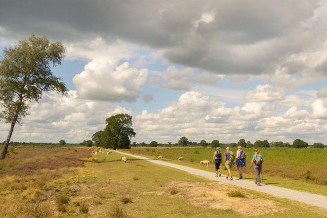 Aekingerzand met wandelaars - Fotograaf Koos Zeedijk