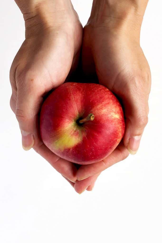Apple Ingredients
