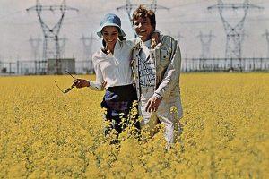 Two for the Road-1967-evolife.bg-vzaimootnosheniq