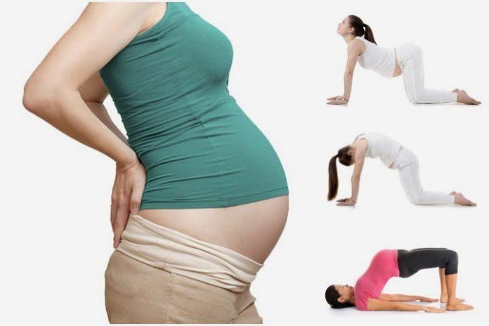 Hamilelikte kuyruk sokumu ağrısı