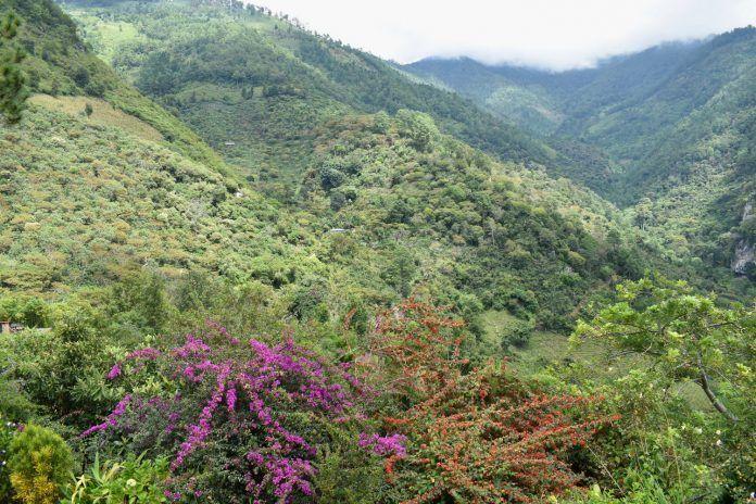 Imagen de la Sierra de las Minas