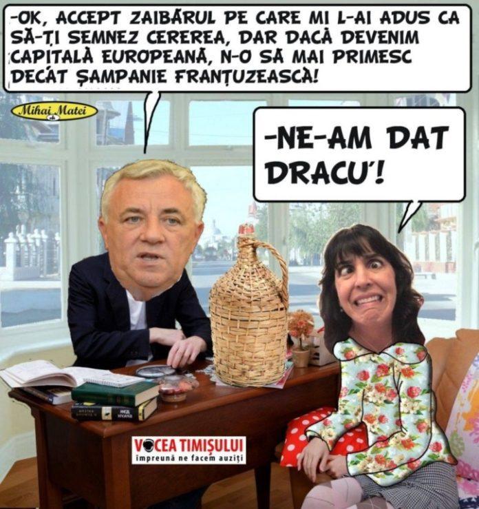 Consiliul-Județean-Timiș-SUSȚINE-candidatura-Timișoarei-la-titlul-de-Capitală-Culturală-Europeană