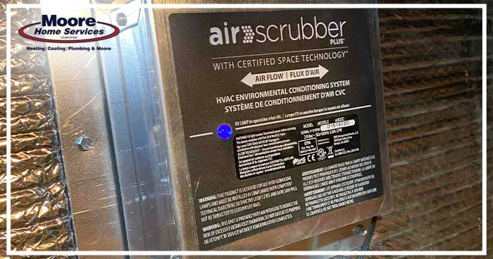 An Air Scrubber Can Help Reduce Allergies from Pet Dander