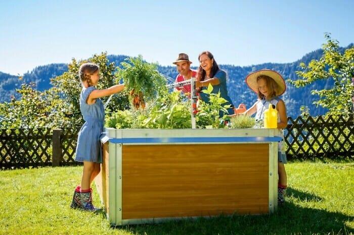 Im Hochbeet eigenes Obst und Gemüse anbauen