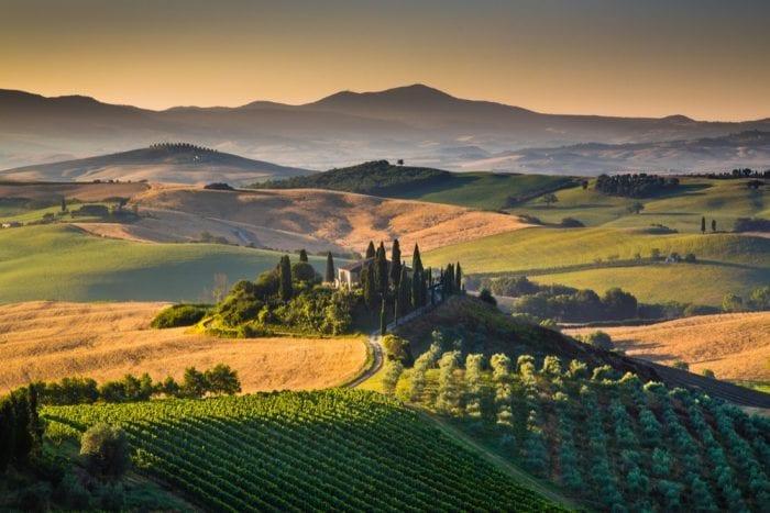 cannabis, hemp, toxic spill, phytoremediation, sustainability, pollution, toxins, hemp farms, Italy