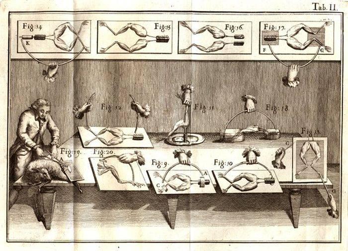 Experimente ciudate - Laborator Galvani