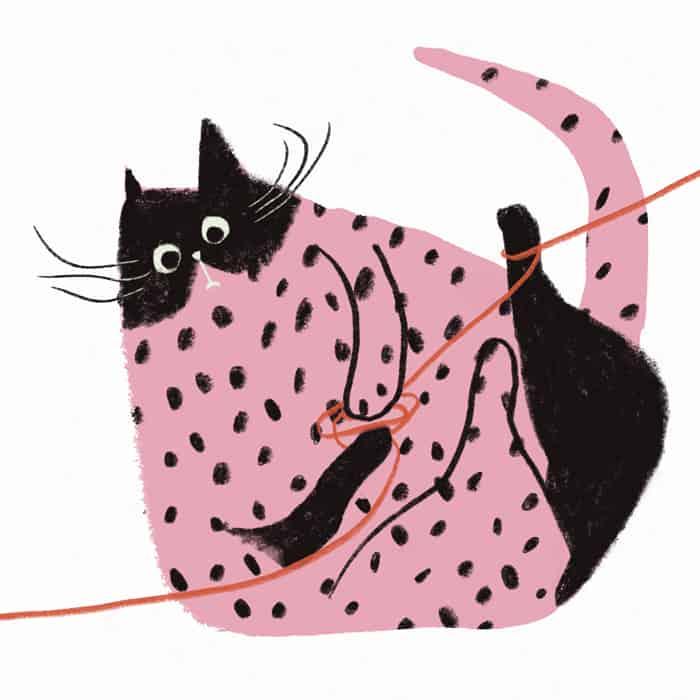 Gato. Original Anna Font