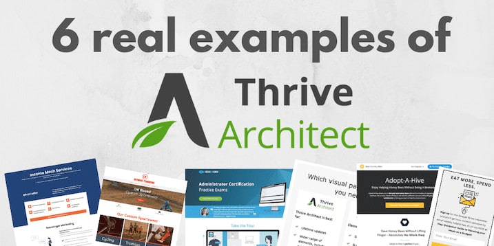 Thrive Architect Examples