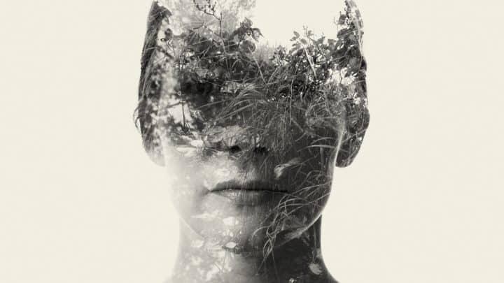 A Figura Humana Distorcida pela Natureza