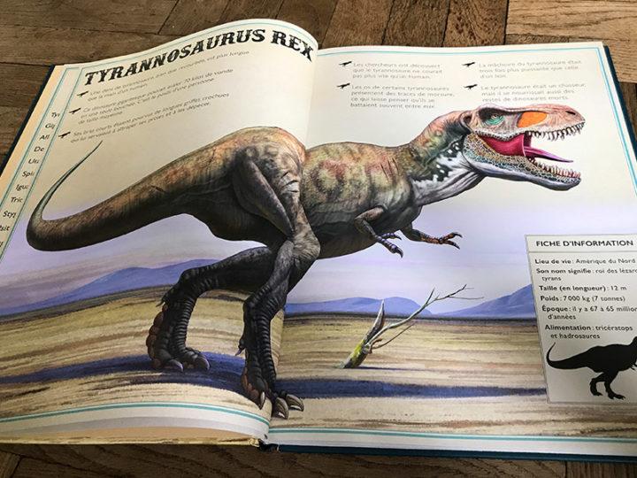 Deux super livres sur les dinosaures, mais pas seulement !