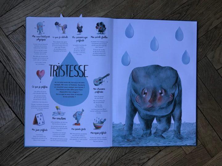 Livres pour enfant : et si on abordait les émotions !
