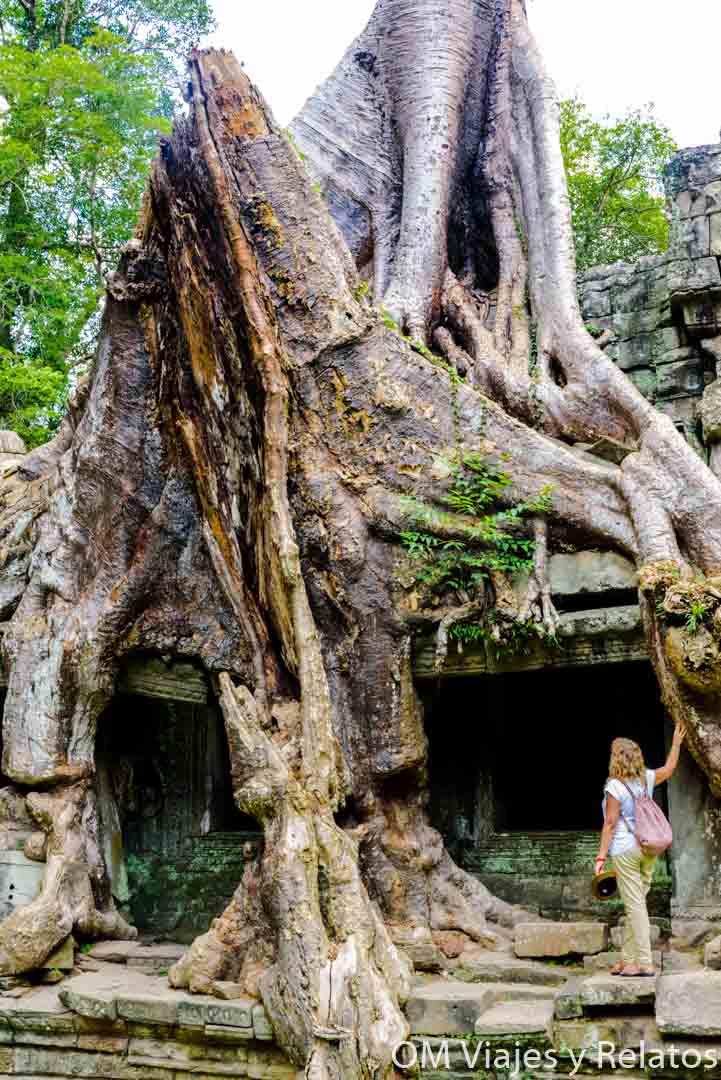templos-recomendados-Camboya