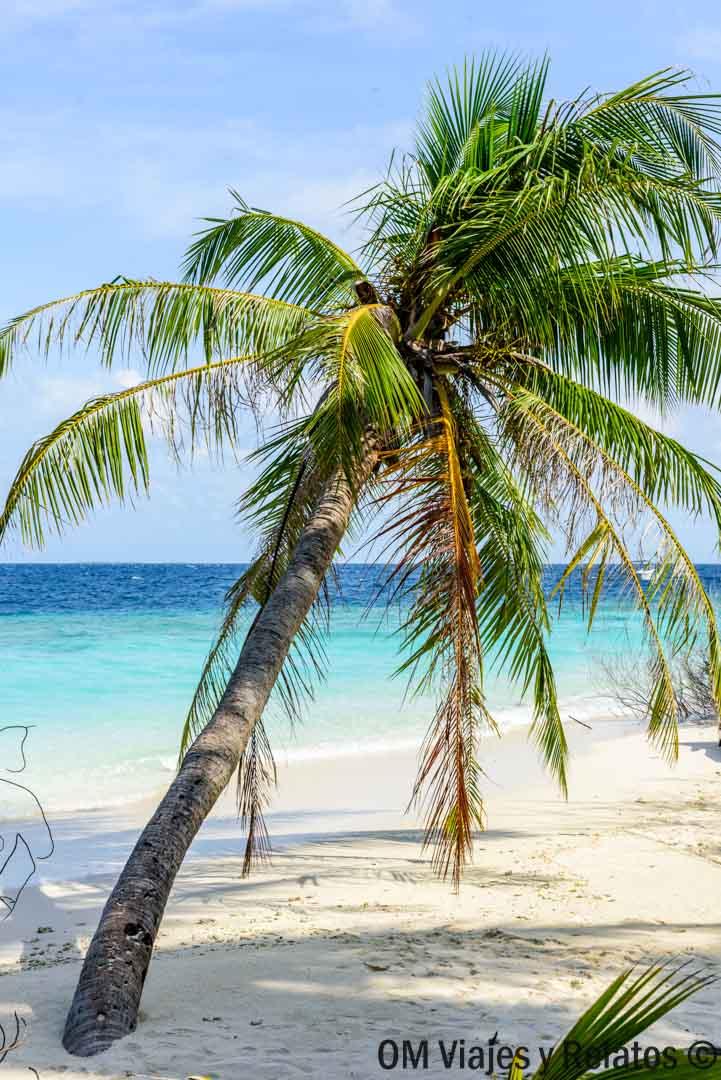 HOTELES-EN-MALDIVAS-CON-LAS-MEJORES-PLAYAS