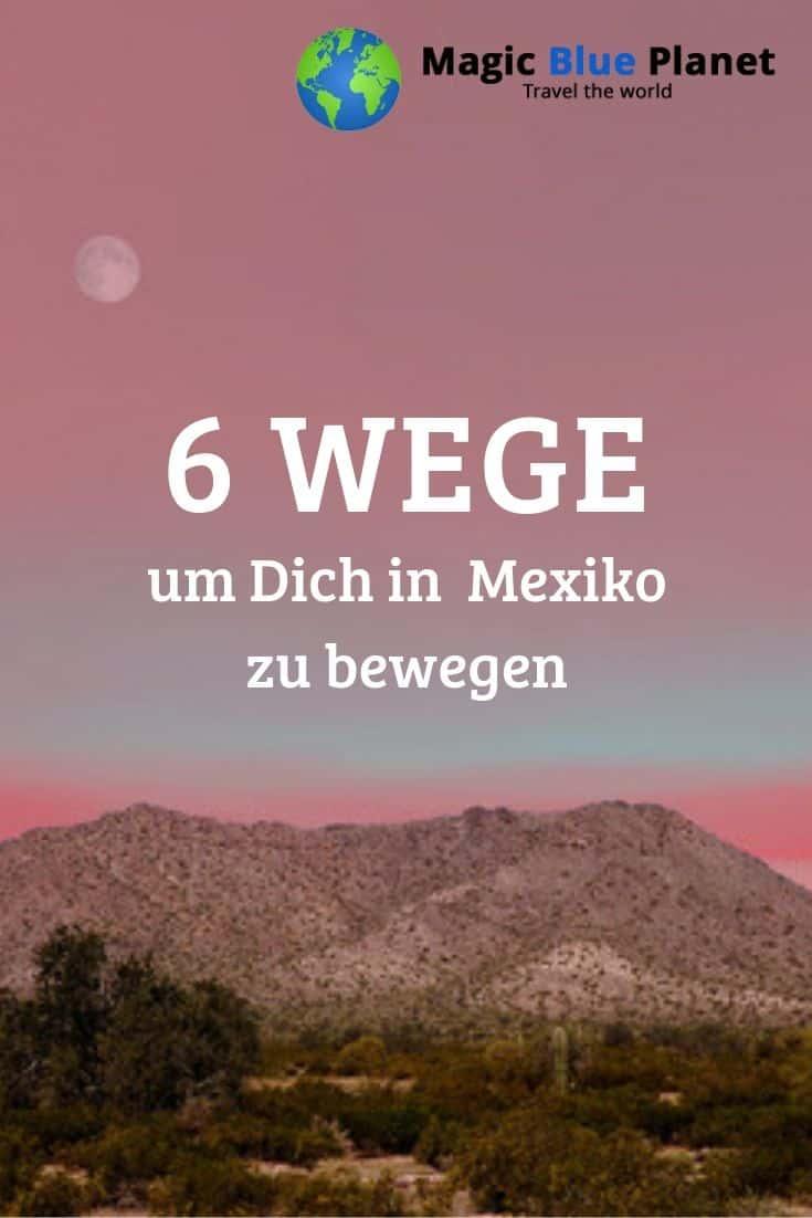 Mexico Domestic Travel Pin 2 DE