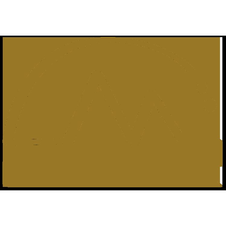 Logo Envergure Réunion Canyoning et tunnel de lave à la Réunion